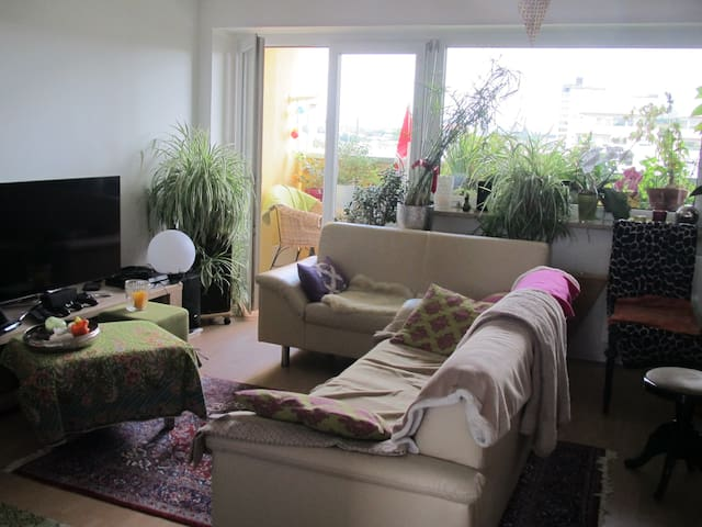 Idyllische, helle Wohnung mit Donaublick - Regensburg