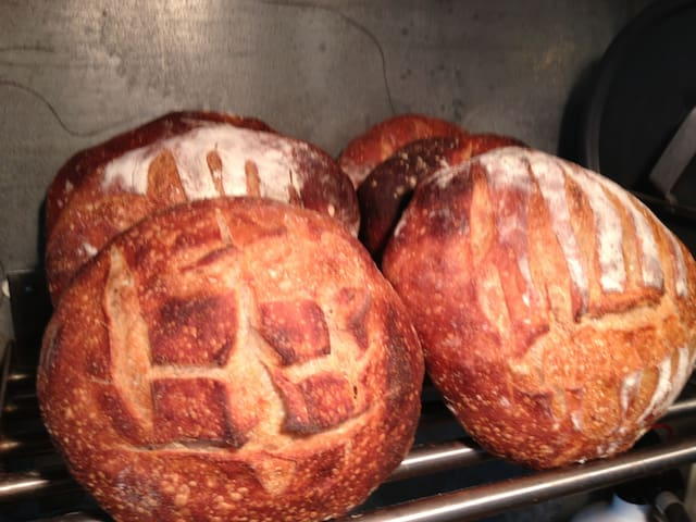 Fresh baked organic artisan style bread.  I serve it in the morning with coffee and jam.