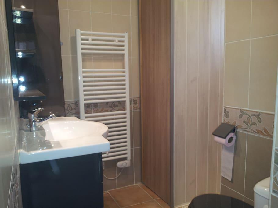salle de bain, WC, douche italienne et machine à laver le linge dans placard.
