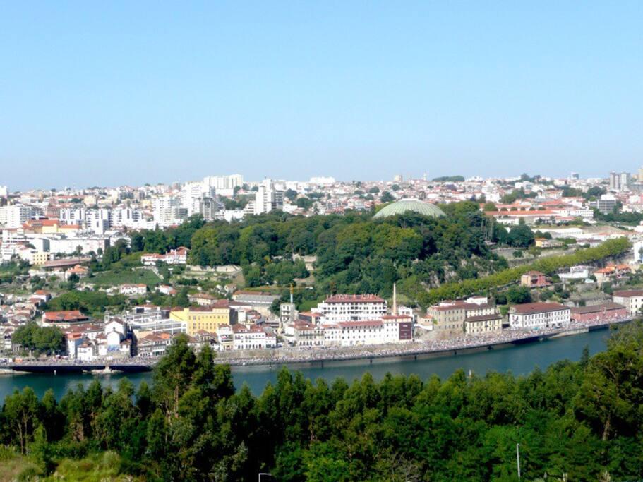 Two big windows to see Oporto