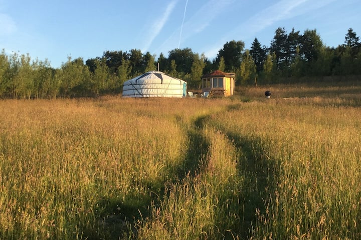 Skylark Yurt at Kite Hill Yurts