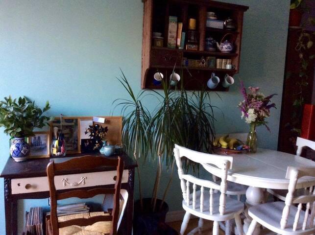 Joli petit appartement en plein centre-ville! - Sherbrooke - Appartement