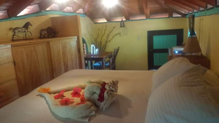 Budget double/triple room at Troncones Point