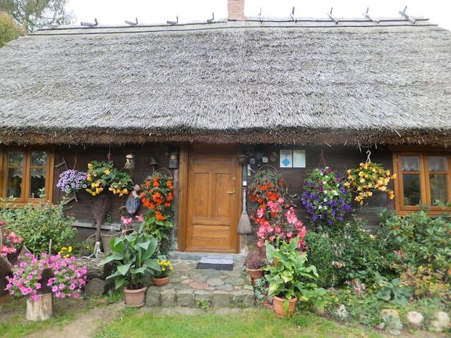BORY TUCHOLSKIE - Chata Pod Strzechą