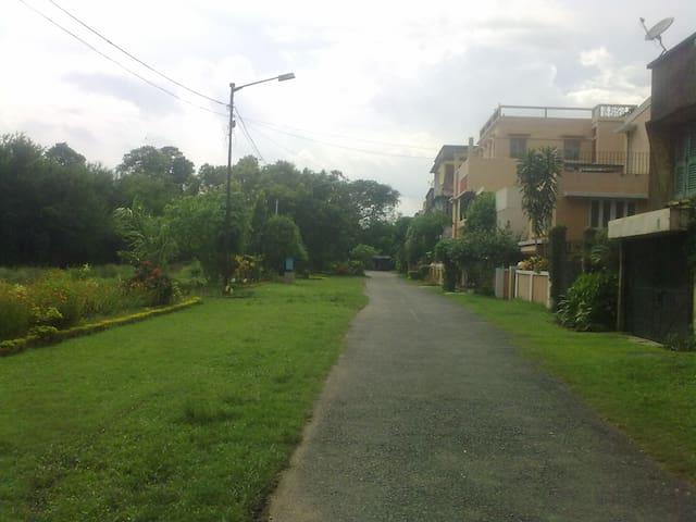 The neighborhood.