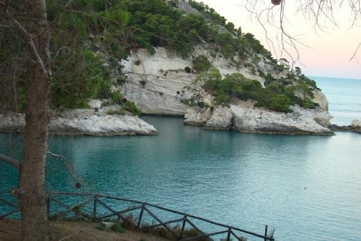 Gargano, Pugnochiuso. Resort - Pugnochiuso