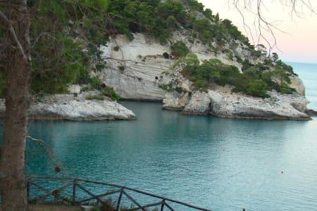 Gargano, Pugnochiuso. Resort - Pugnochiuso - Lägenhet