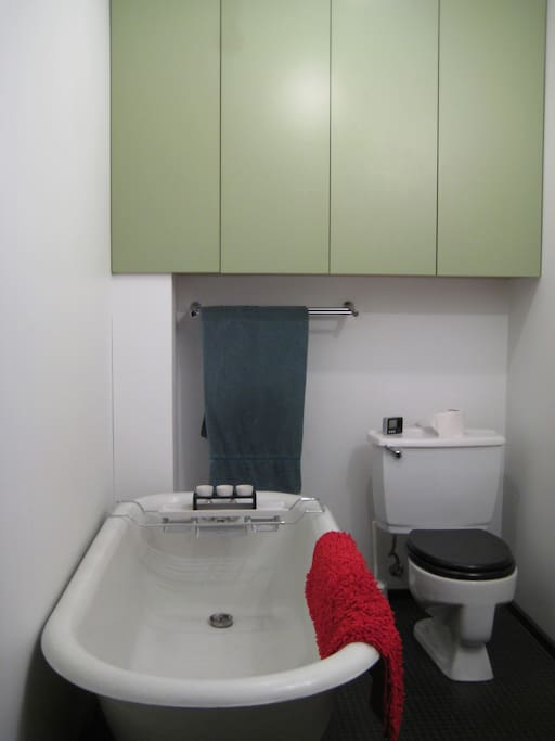 """View-2 of the """"contemporary"""" style bathroom."""