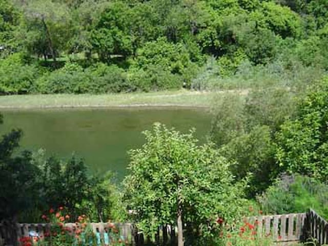 Riverside Hideaway-quiet riverfront - Monte Rio - Apartment