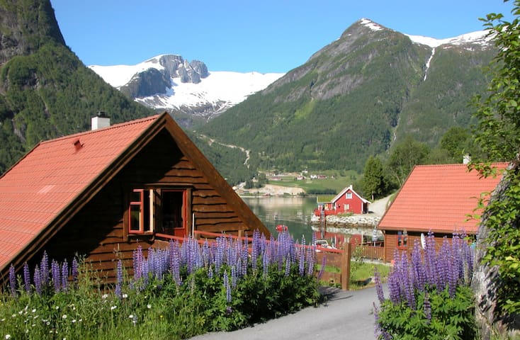 Amazing fjord view, cabins right by the Sognefjord