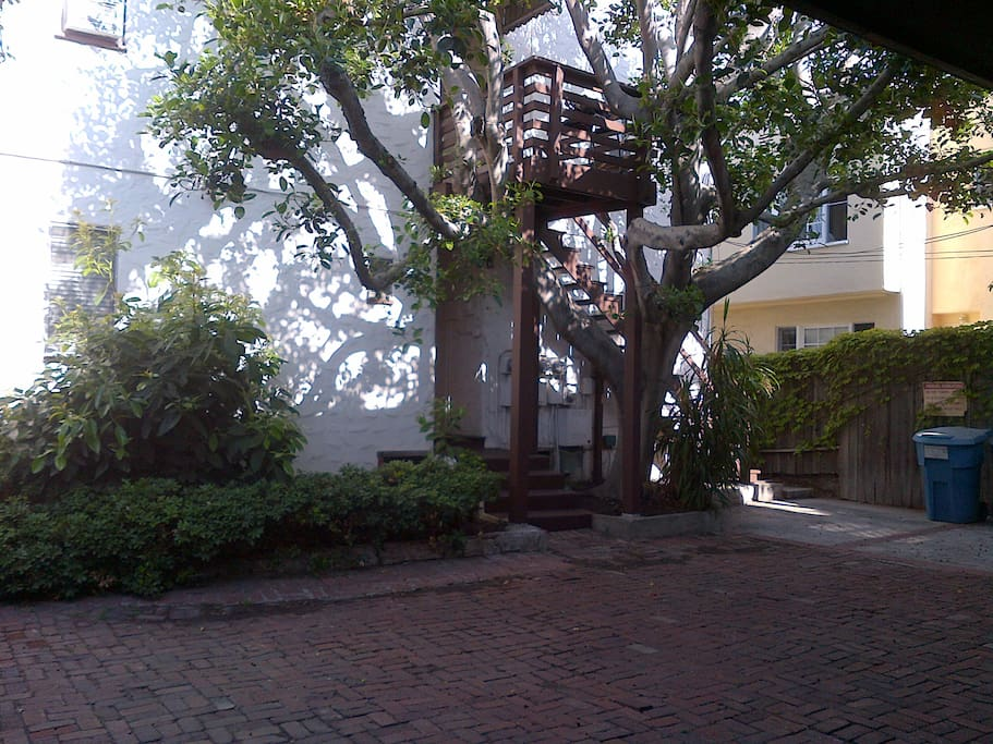 Cute & quiet back courtyard and your own backdoor.