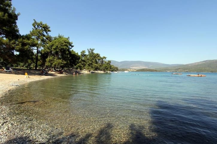 House Among Forest & Private Beach  - Mugla - Hus
