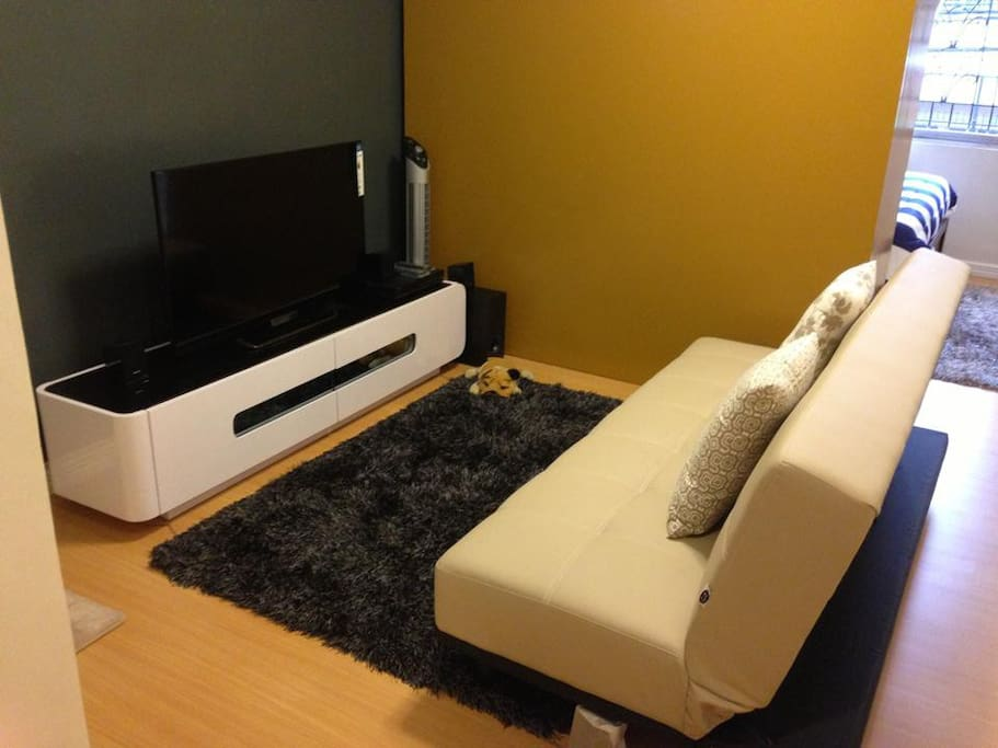 Living room with high definition Cable TV, DVD player and electric fan. Cozy sofa bed and clean carpet.