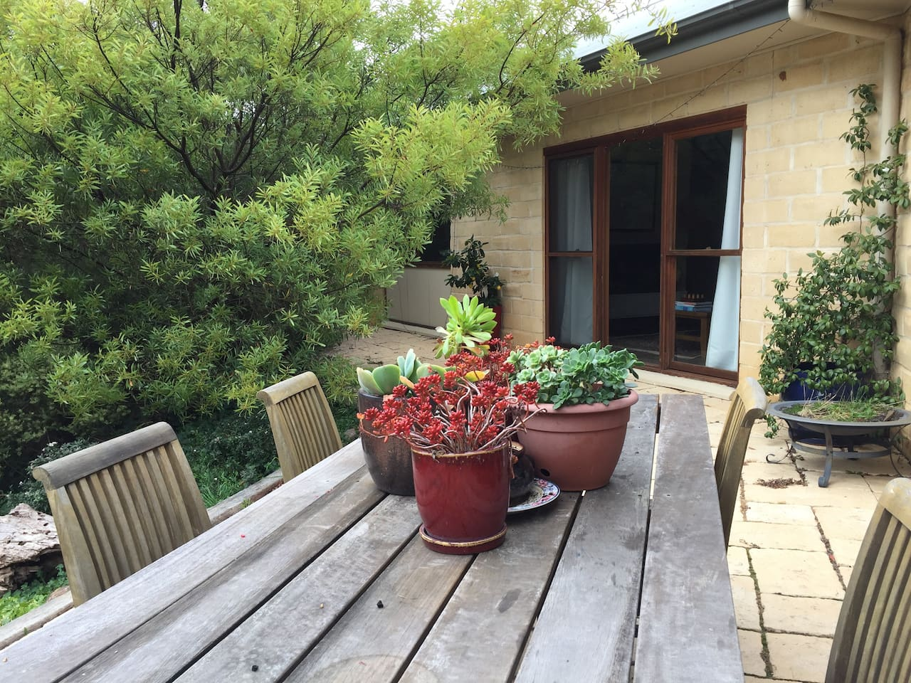 Your accommodation sits in a native garden setting.