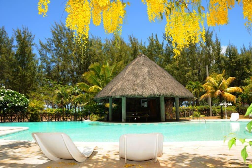 Kenville 9 piscine plage 50m maisons louer for Campement a louer a grand baie avec piscine