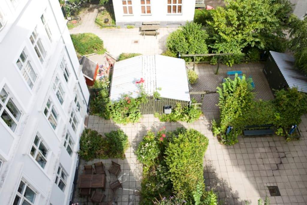 Lovely garden in the courtyard