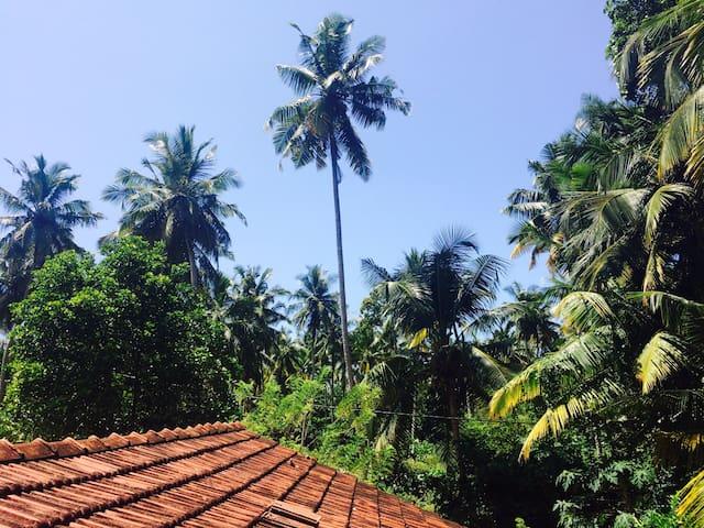 Jungle Villa - Ahangama - Rumah