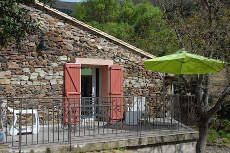 Maison de caractère  pied du Caroux - Taussac-la-Billière - Dům