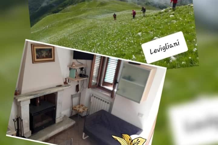 La Casina Levigliani Versilia