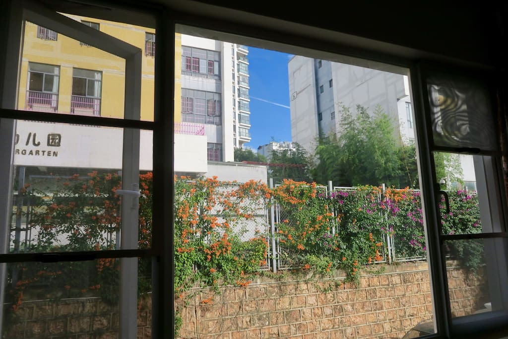living room window faces north