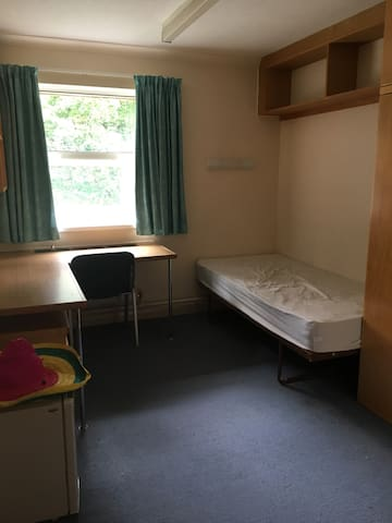 Single room, Cardiff, champions league