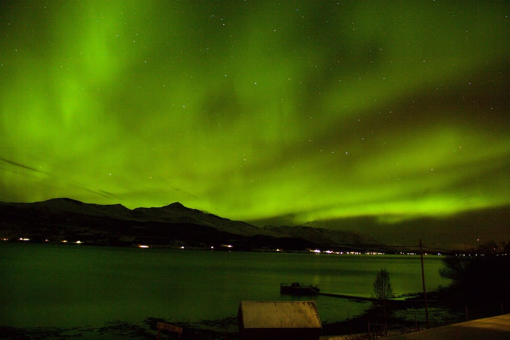 View on the fjord with northern lights