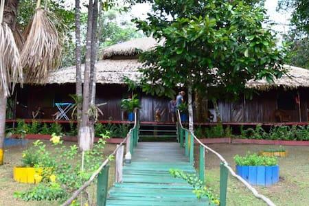 A beautiful Jungle Lodge in Manaus
