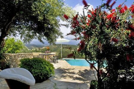 Lemon villa in Istron - Istro