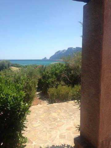 Villa sulla spiaggia , vista da urlo. - Porto San Paolo - Apartmen