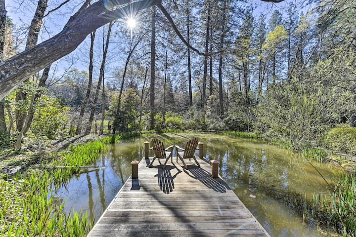NEW! Secluded Cottage on 2.5 Acres w/ Pond & BBQ!