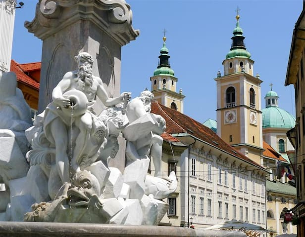 The heart of Ljubljana's Old Town   - Lubiana