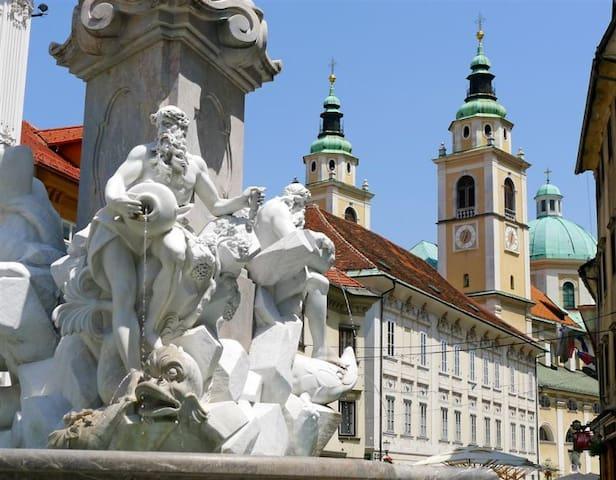 The heart of Ljubljana's Old Town   - Liubliana