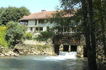 Exceptionnel Moulin sur rivière au calme