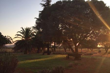Relax and Unwind to the Kalahari Sunset