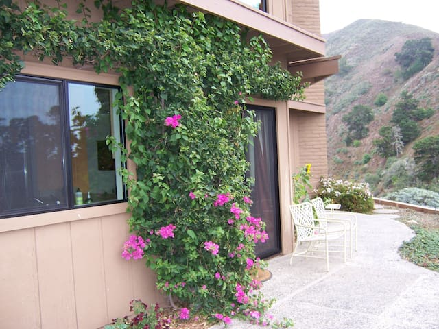 A peek at the patio and  your entry behind the Bougainvillea