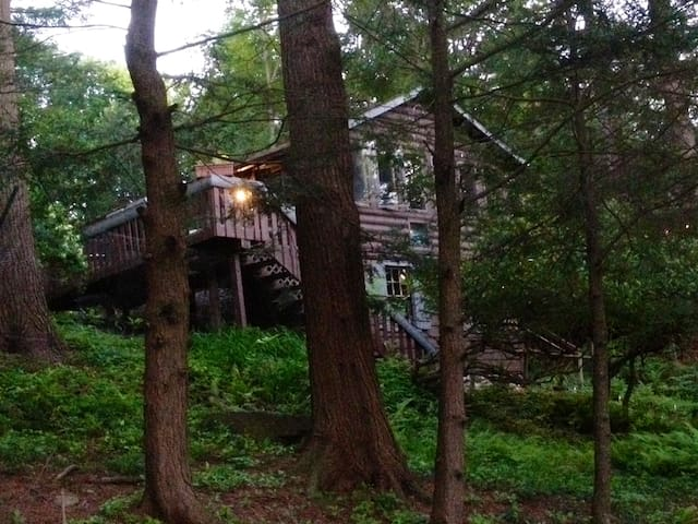 Cozy Catskills Guest Cabin Near Lakes - Smallwood - Cottage