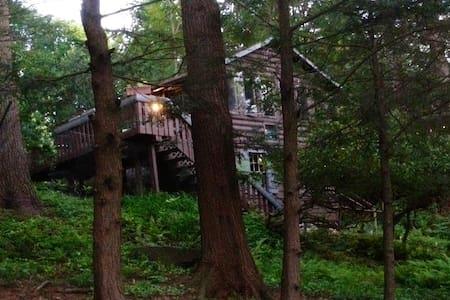 Cozy Catskills Guest Cabin Near Lakes - Smallwood - 小屋