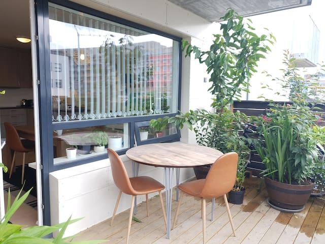 Reykjavík Apartment with Sunny Terrace