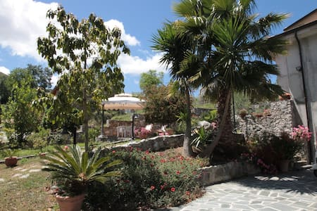Holidays in Tropea - Gasponi