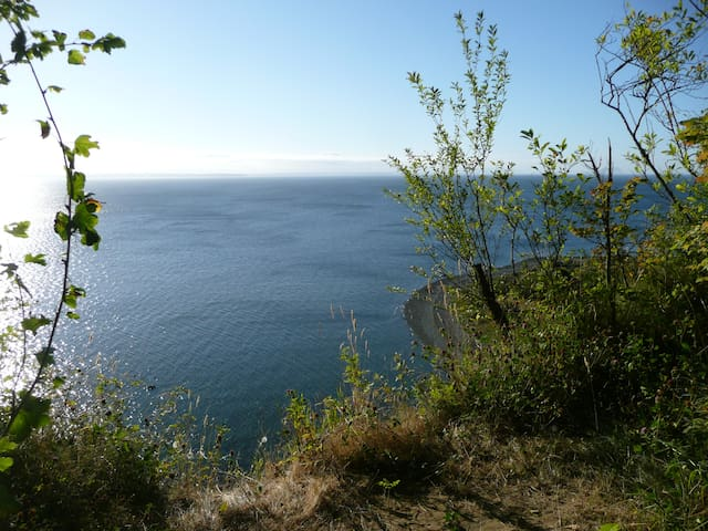 A view of Lily Point from the upper area of the park