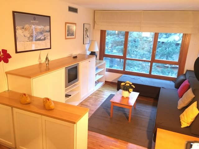 Cozy apartment really close to the ski station - Baqueira - Wohnung