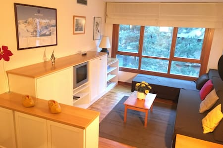 Cozy apartment really close to the ski station - Baqueira