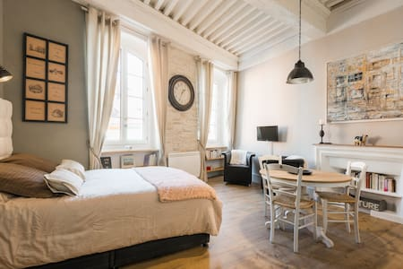 The Cocoon ! Very close the lake ! in old city. - Annecy - Apartmen
