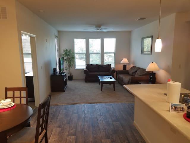 Tampa Getaway! - Tampa - Apartment