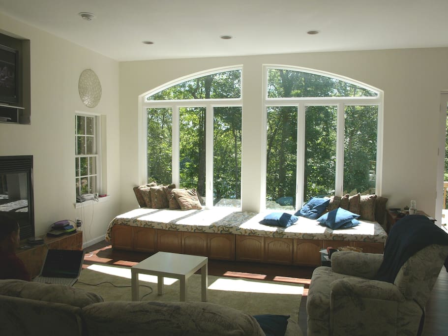 Relax with a book in the family room window seats Or sleep here at night watching the full moon thru the woods - the two window seats are actually two twin beds with very comfortable memory foam mattress