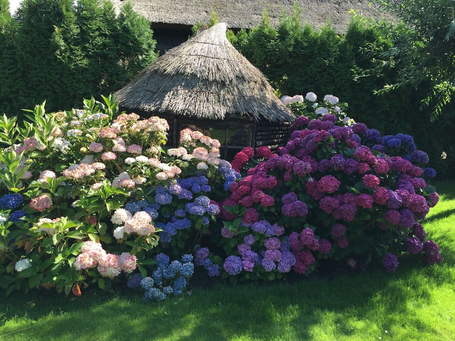 Tuinhuisje / Garden shed