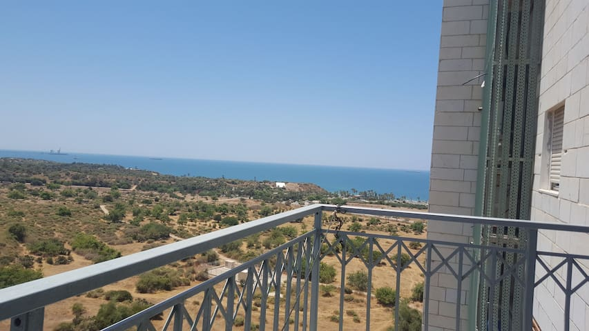 Ashkelon Beach View