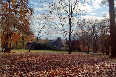 Idyllic Bluemont Retreat*Historic Cozy Cabin*Views - Bluemont - Hytte