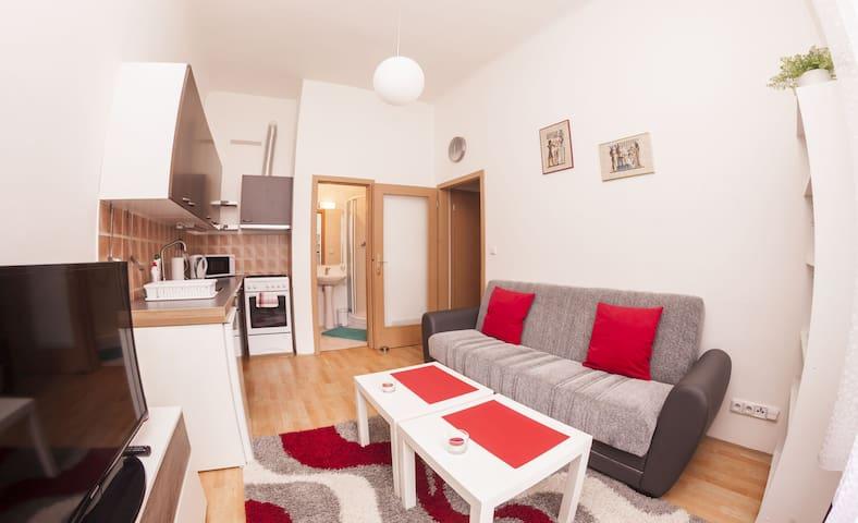 Nice apartment near the center of Prague - Prague - House