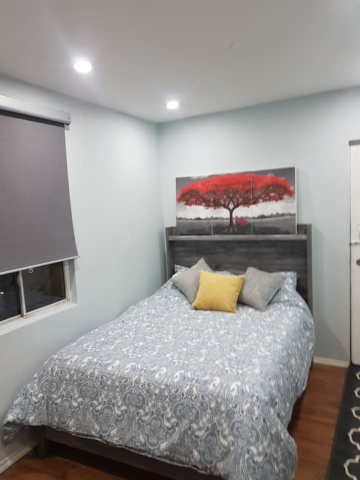 **Cosy Apartment in down town Toronto**